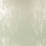 2707241 Birches Aqua, Silver by FSchumacher